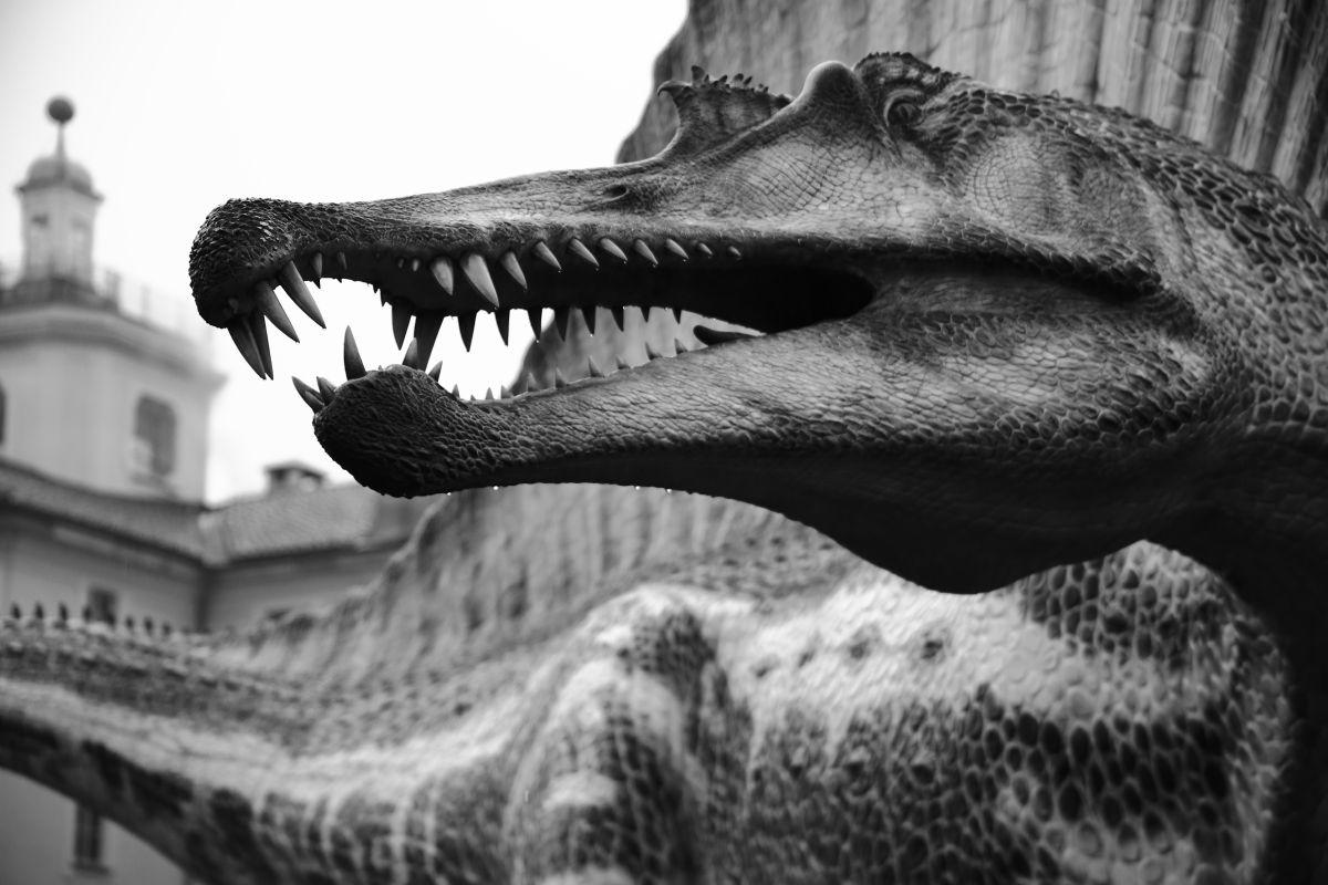 Spinosauro - Spinosaurus Stromer, 1915